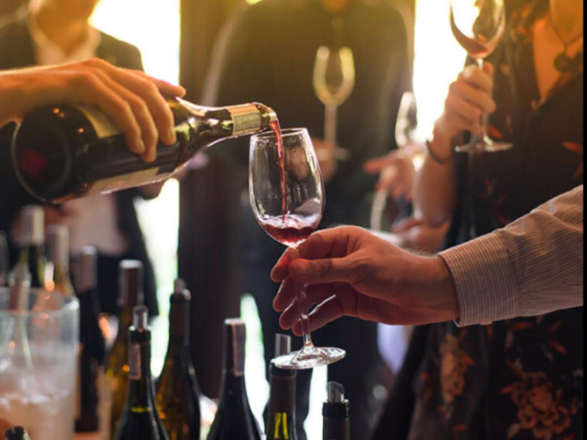 Bodega Espelt : cata de vins